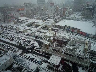 SENDAI SNOW.jpg